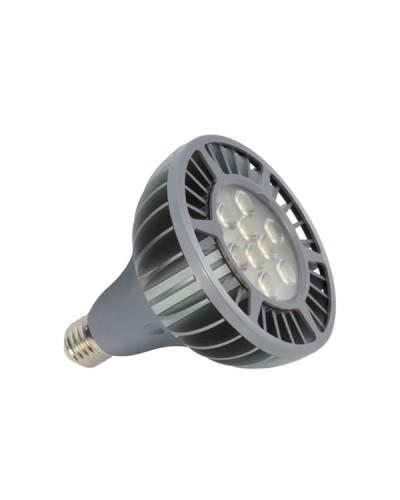 LAMPE LED PAR38